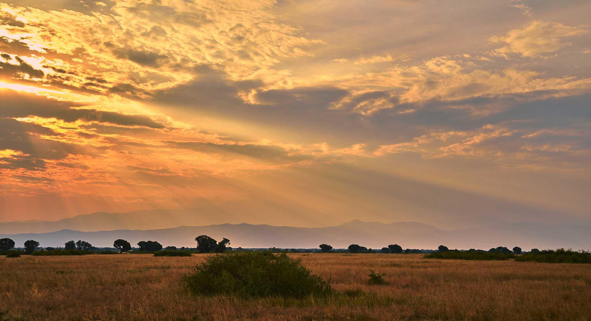 Le parc national de Queen Elisabeth lors d'un circuit en Ouganda
