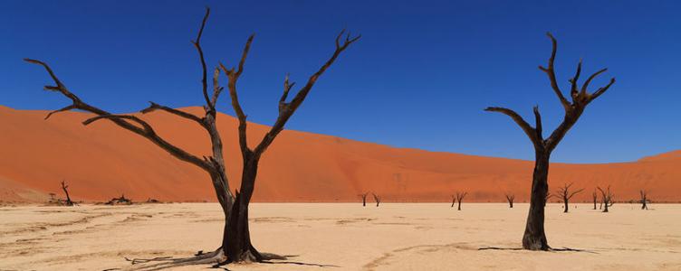 Samsara Safari Namibie petits groupes