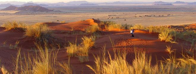 Dunes dans la région de Sesriem