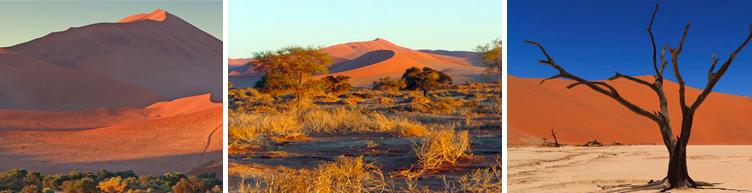 Paysages du désert de Namibie avec Samsara
