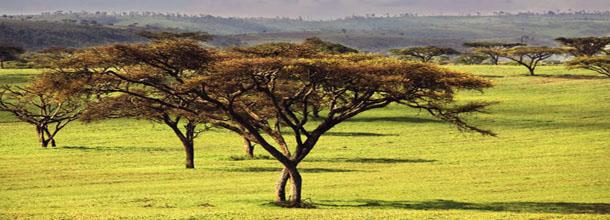 Ethiopie paysage
