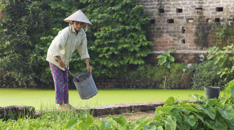 Vietnamienne voyage nord samsara