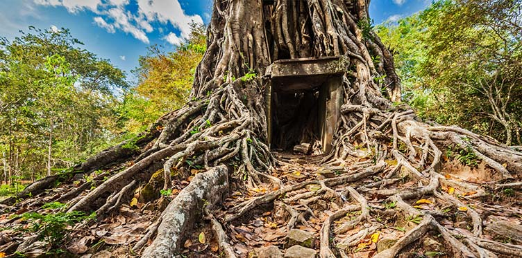temple Sambor Prei Kuk au Cambodge voyage combiné vietnam
