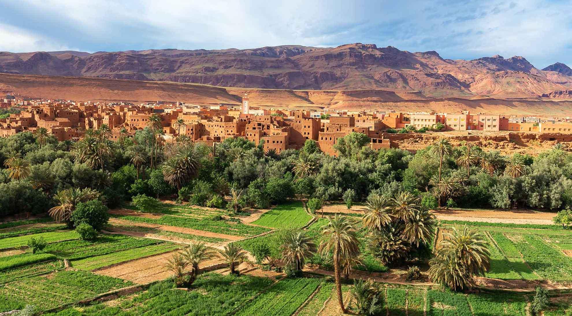 Voyage au Maroc, découverte d'une oasis, Samsara Voyages
