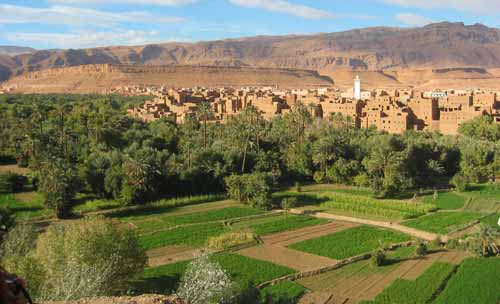 Circuit désert Maroc Dades