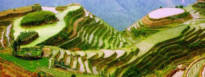 Rizières de Longji en Chine Circuit Samsara