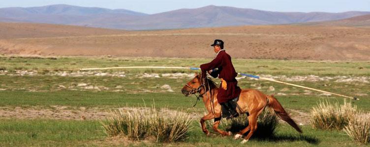 Cavalier plaines Mongolie Samsara