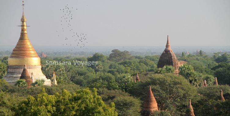 Plaine de Bagan temples jungle Myanmar