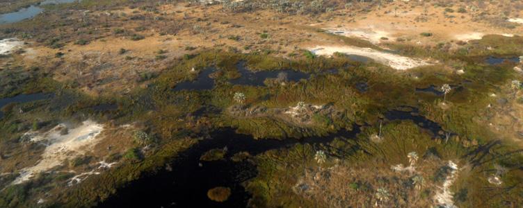 Safari Samsara voyages vue aérienne