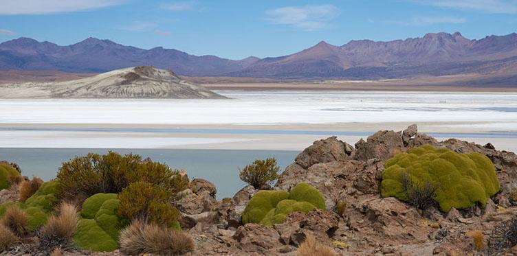 Vue sur le Salar de Surire au Chili