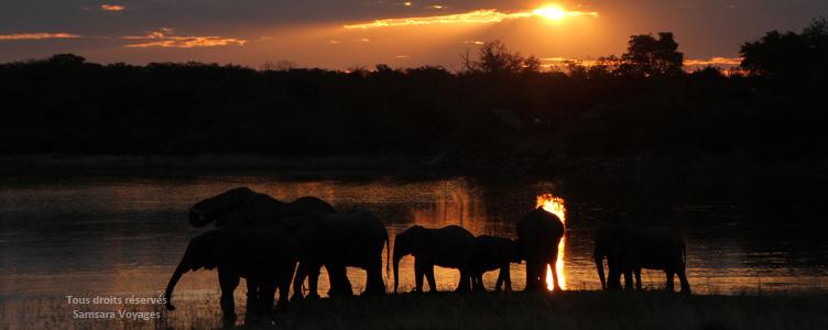 Coucher de soleil et éléphants au Parc Hwange au Zimbabwe avec Samsara