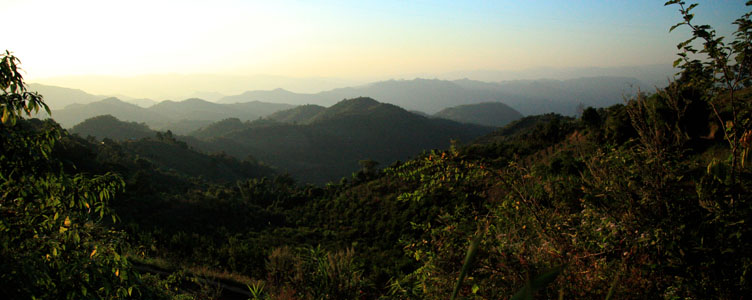 Kalaw jungle voyage Myanmar