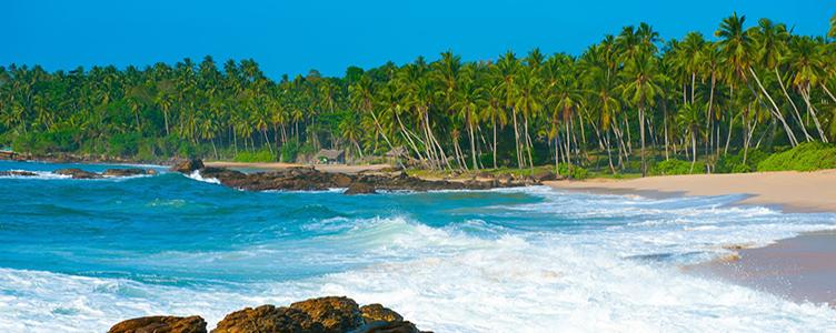 Samsara plage Sri Lanka