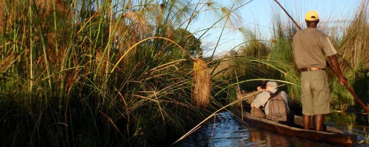 Samsara safari Okavango Mokoro rivière canoë Afrique
