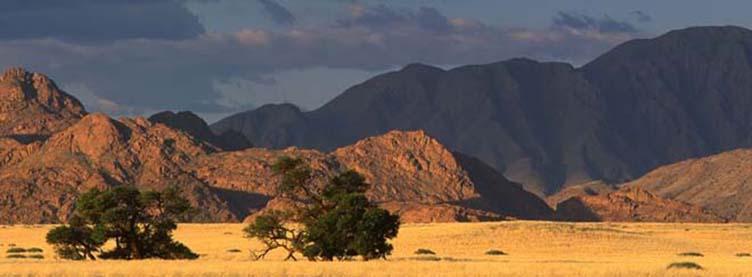 Dans le Damaraland, montagne du Brandberg