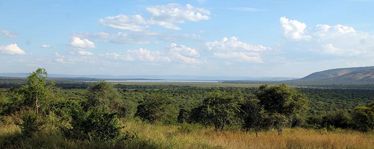 Le Parc Mburo lors d'un voyage en Ouganda Samsara