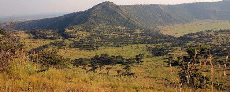 Balade dans le parc Queen Elisabeth en Ouganda lors d'un voyage